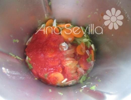Tomate y resto de ingredientes